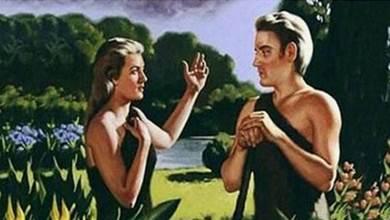 大膽假設如果地球只剩1男1女,不考慮近親結婚,多長時間能生出75億人?