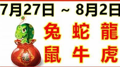 12生肖一周運勢(7.27~8.2)