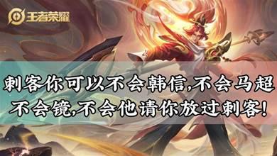 王者榮耀:刺客你可以不會韓信,不會馬超,不會鏡,不會他請你放過刺客!