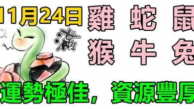 11月24日生肖運勢_雞、蛇、鼠大吉