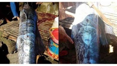 菲律賓漁民捕到一隻「全身佈滿圖騰的大魚」引網熱議,仔細看上面的圖案卻感到不太尋常!