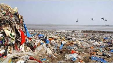 耗時595天!他替印度最髒海灘「清掉5千噸垃圾」 3天後「被巨浪打回原形」網嘆:人類的報應