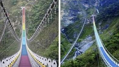 全台最長最深、最壯觀「漸層彩虹吊橋」終於開放!「懸空30層樓高」踏在彩虹上:隔50公尺就有驚喜