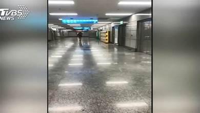 毛毛的!板橋車站深夜傳「佛歌」 民眾:很詭異